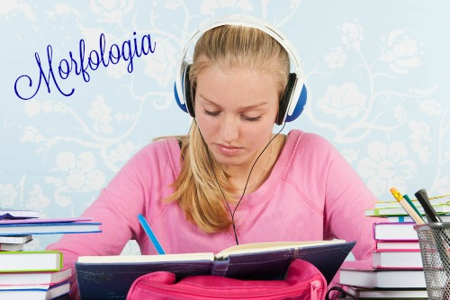 A Morfologia é o estudo a respeito da estrutura, da formação e da classificação das palavras
