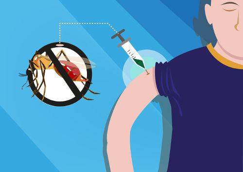 A primeira vacina contra a dengue registrada no Brasil é de uma empresa francesa