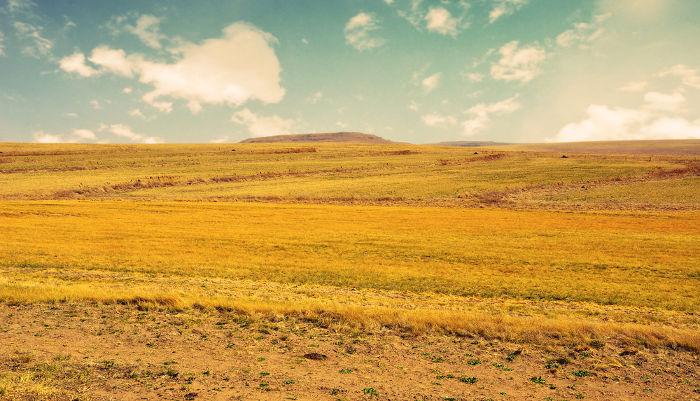 A reforma agrária objetiva acabar com os latifúndios improdutivos no meio rural