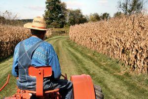 A Sociologia Rural apresenta um caráter utilitarista, visando à melhoria das condições de vida do homem do campo