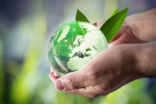 A sustentabilidade implica um desenvolvimento que preserve o meio ambiente