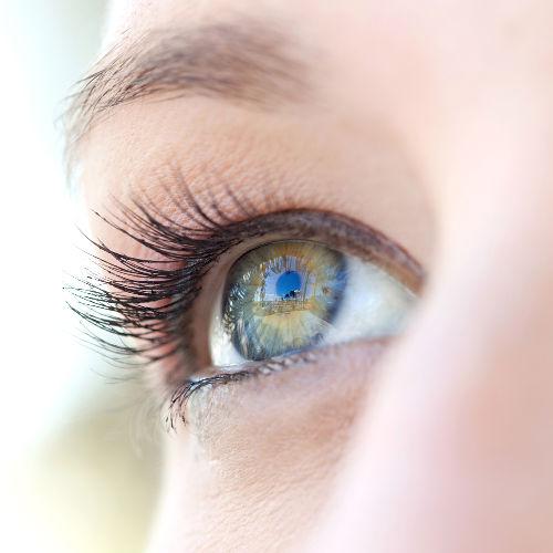 A visão é um dos cinco sentidos e está relacionada com a percepção de imagens