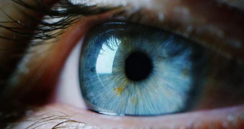 A visão é um importante sentido que pode ser trabalhado em sala de aula de maneira divertida