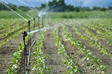 A irrigação é responsável pela maior parte do gasto de água no mundo