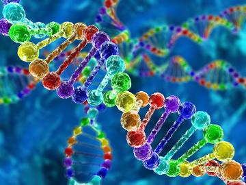A descoberta da estrutura do DNA foi fundamental para o avanço da Bioquímica