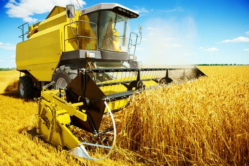 A agropecuária é de suma importância para a economia do país.