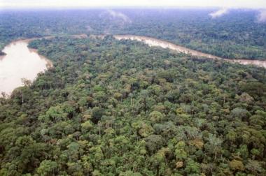 Floresta amazônica, a maior floresta tropical do planeta