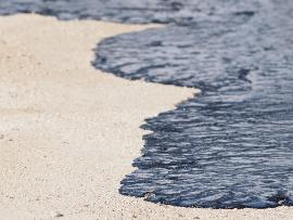 Impacto causado por um vazamento de petróleo
