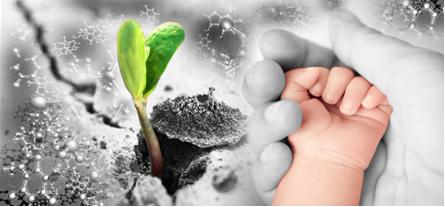 A matéria viva é constituída principalmente de moléculas orgânicas