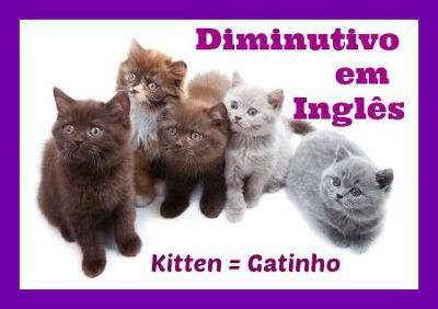 """Alguns substantivos em inglês possuem uma forma própria para o diminutivo, como """"kitten"""""""