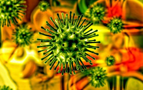 Alguns vírus, como o da gripe, podem ser responsáveis por várias pandemias