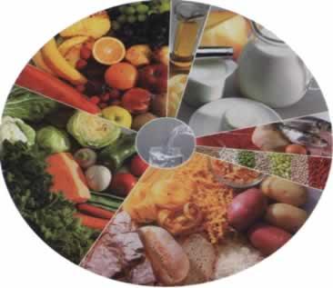 Para evitar o desperdício é possível usar a criatividade no reaproveitamento dos alimentos
