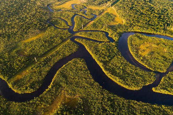 O bioma Amazônia abrange a maior floresta tropical do mundo: a Floresta Amazônica.
