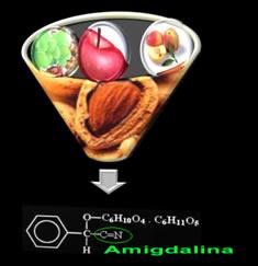 A amigdalina é uma nitrila presente nas sementes e folhas de muitas frutas e vegetais.