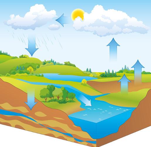Analise a representação do ciclo da água