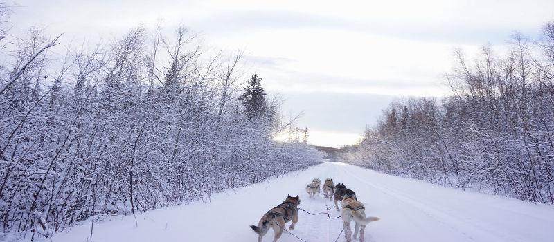 As miragens também podem acontecer em lugares frios como o Alasca, mas seriam fenômenos mais raros
