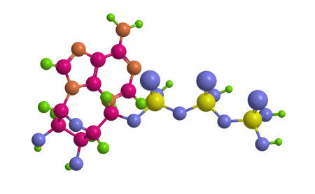 ATP é uma molécula que garante o fornecimento de energia para a célula