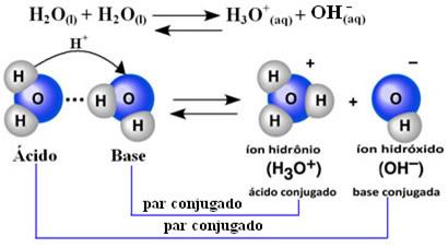 Equação e representação da autoionização da água