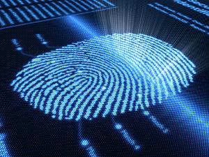 Dermatoglifia - o estudo das impressões digitais