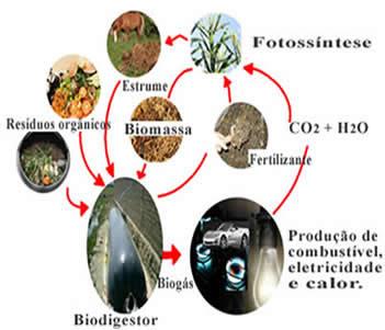 Esquema de produção de biogás: matérias-primas e utlização