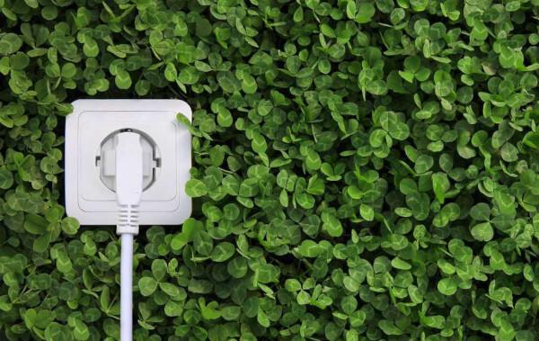 Bioenergia refere-se à produção de energia por meio da biomassa, ou seja, da matéria orgânica animal ou vegetal.