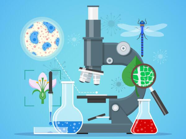 A Biologia é uma área complexa que se destina ao estudo dos seres vivos.