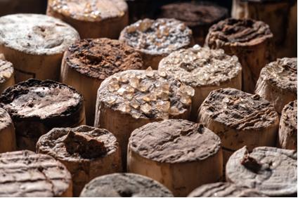 Cristais de ácido tartárico obtidos na fabricação de vinho