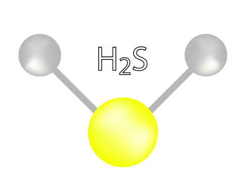 Ácido sulfídrico é um exemplo de substância cujas moléculas apresentam geometria angular