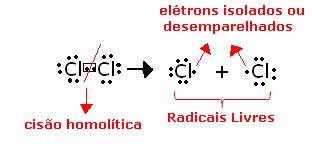 Cisão homolítica do cloro, para a formação de radicais livres.