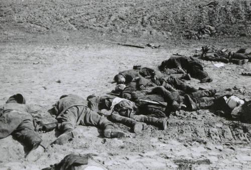 Combatentes ucranianos mortos em Kiev pelo Exército Alemão