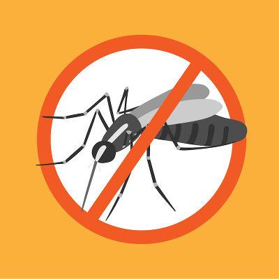 Combater o <i>Aedes aegypti</i> é cuidar da saúde da população