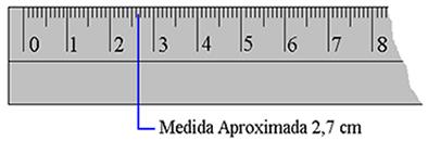 Comprimento aproximado em centímetros