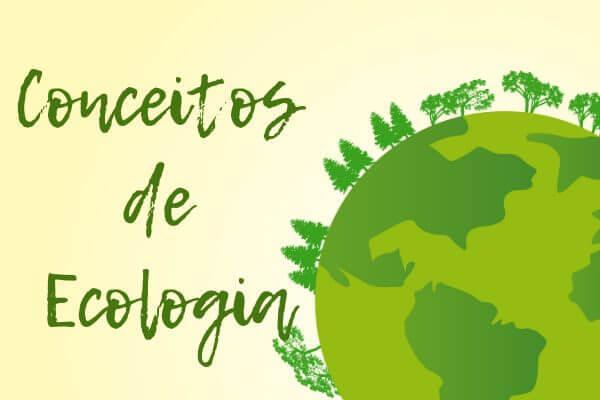 Conhecer os conceitos de Ecologia é fundamental para compreender melhor essa parte da Biologia.