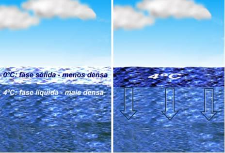 Esquema da densidade e das correntes de convecção nos mares e lagos