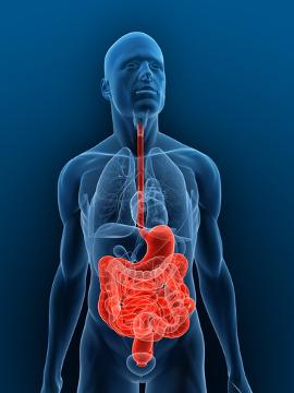 A doença de Crohn é uma inflamação que acomete o sistema digestório