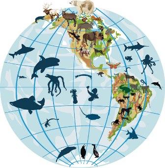 A ciência que estuda a distribuição das espécies ao redor do globo é a biogeografia