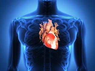 A amiloidose quando acomete o coração pode levar a arritimias e insuficiência cardíaca