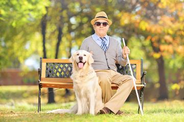 Portadores de deficiência visual têm o direito garantido por lei de andarem com cão-guia em locais públicos