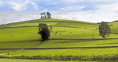 Pasto cercado na Inglaterra. Os cercamentos auxiliaram no impulso da Revolução Industrial inglesa