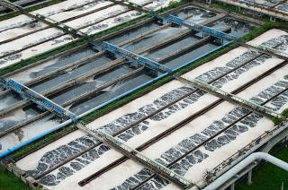 Tratamento de efluentes por meio de organismos biológicos em tanques