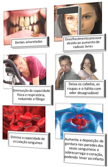 Efeitos da nicotina sobre o organismo humano