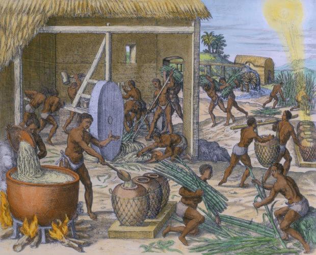 As leis abolicionistas realizaram a transição gradual para a abolição da escravatura atendendo aos interesses das elites do país.