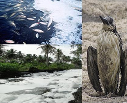 Efeitos do excesso de espuma em rios e lagos.