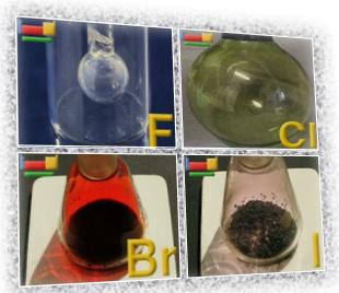 Esses são quatro dos cinco elementos pertencentes à família dos halogênios