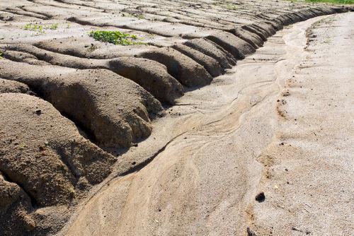 Exemplo de uma área que sofre com o processo de desertificação