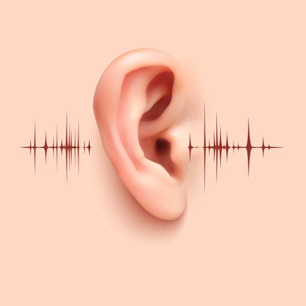 Algumas características das ondas sonoras não são bem compreendidas em nosso cotidiano