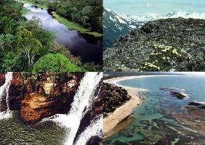 Extremos de biomas terrestres: floresta pluvial tropical e tundra; e de biomas aquáticos: águas correntes e oceano