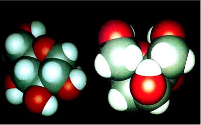 A ciclização da glicose forma estruturas como as mostradas acima, que são a glicopiranose e a glicofuranose, respectivamente.