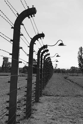 Imagem retratando um campo de concentração
