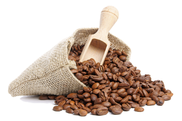 Durante o século XIX, São Paulo foi o maior produtor de café do país.